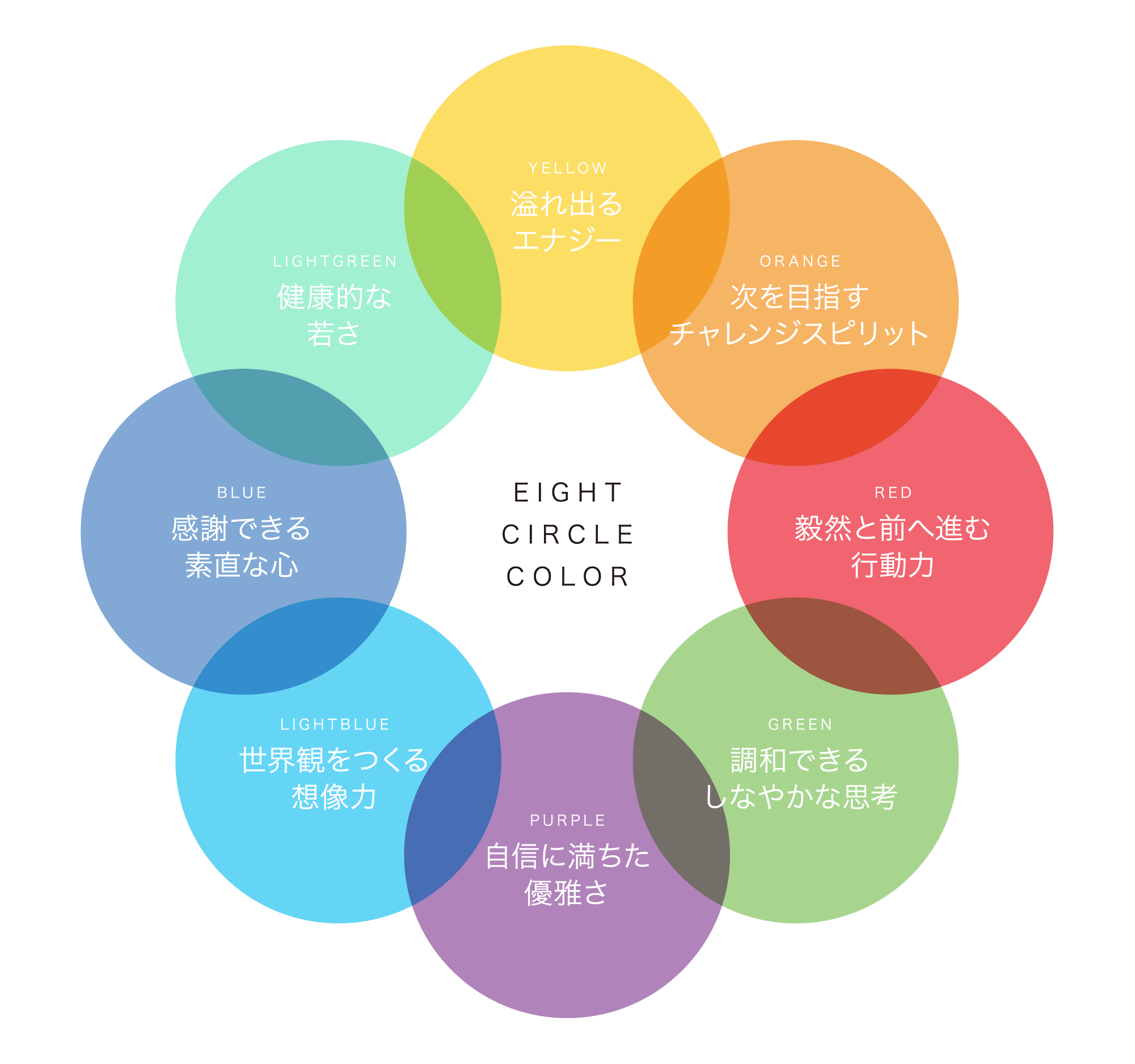 EIGHT CIRCLE COLOR
